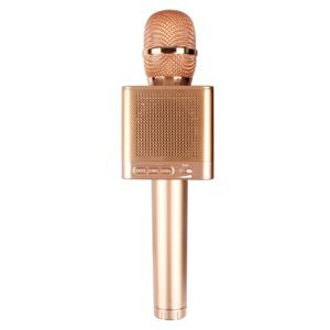 Microphone kèm loa Micgeek Q10S